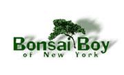Bonsai Boy Of New York screenshot